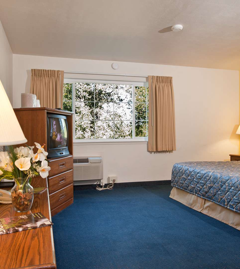 RELAX IN OUR PRIVATE CABINS AND SPACIOUS GUEST ROOMS