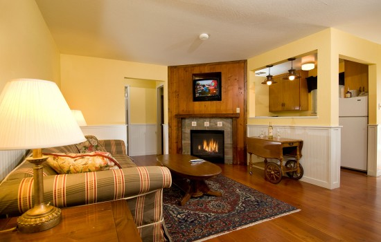 DELUXE CABIN WITH SLEEPER SOFA AND FIREPLACE – NON SMOKING
